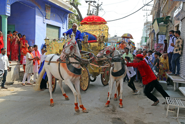 Horseriders try to control a pair of horses after misbehavior during a religious procession in Beawar.