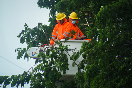 Meralco linemen cutting trees in boundary of Antipolo City and Angono, Rizal to avoid the danger brought by Super Typhoon Rolly. Super Typhoon Rolly are expected to landfall in CALABARZON Area anytime soon.
