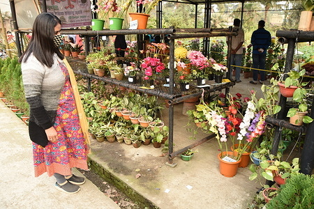 Some fifty five participants of a flower growers' association organized their annual flower show for three days with winter flowers, plants, vegetables amid Covid-19 pandemic.