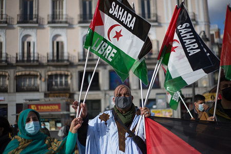 Demonstrators protest for a Free Sahara at Puerta del Sol in Madrid on the school day of Peace and Nonviolence.