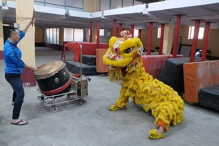 Chinese community is practicing a mimic lion's dance movements for the up coming Chinese lunar new year.