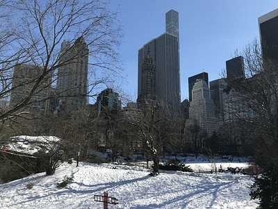 Central Park in New York City is seen frozen on February 21, 2021.