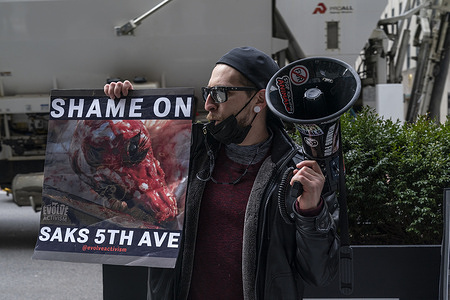 Animal rights activists staged rally in front of Saks Fifth Avenue department store. They were targeting gruesome fur trade for fashion industry. Front entrances of Saks were blocked and manned by police officers and security guards.